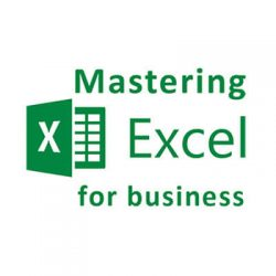 Mastering Excel for Business